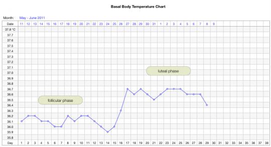 grafico della temperatura basale