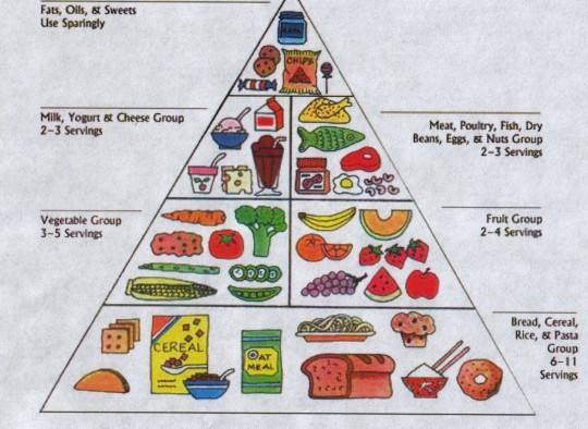 piramide alimentare bambino